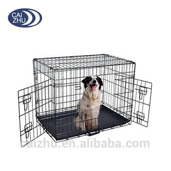 chenil chien 36
