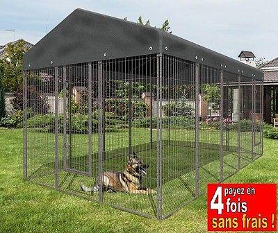 chenil chien 47