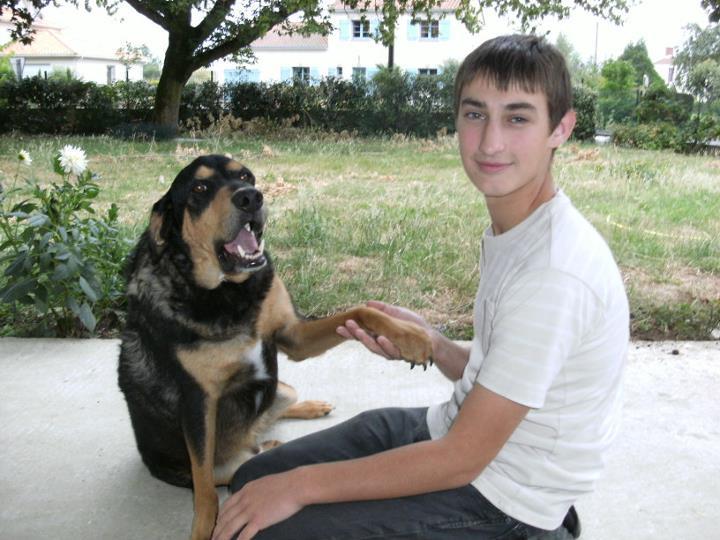 garde chien 44600