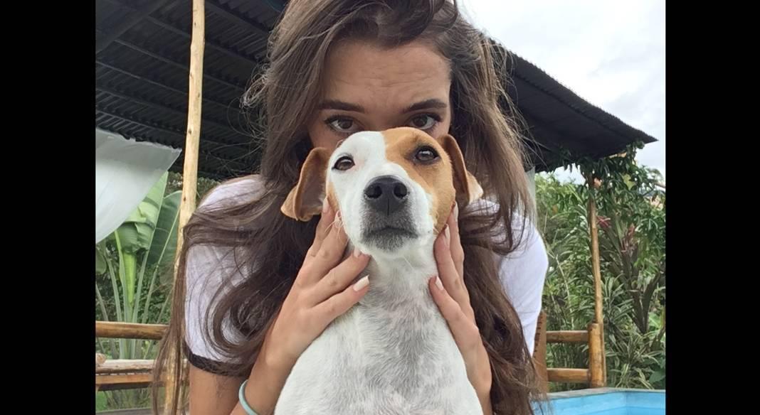 garde chien a bordeaux