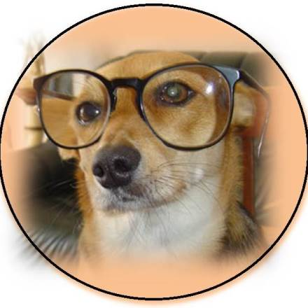 garde chien futuroscope