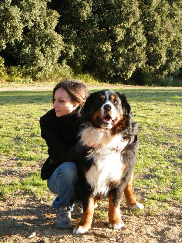 garde chien longue duree