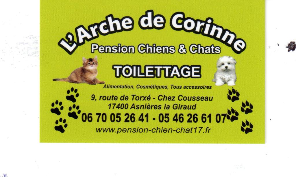 pension chien 26