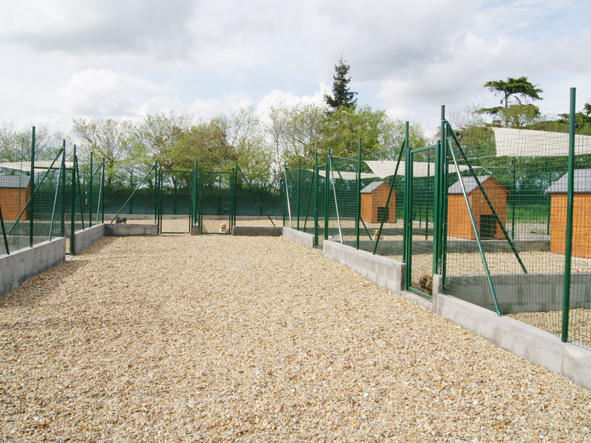 pension chien angers