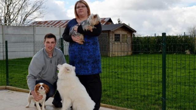 pension chien saumur