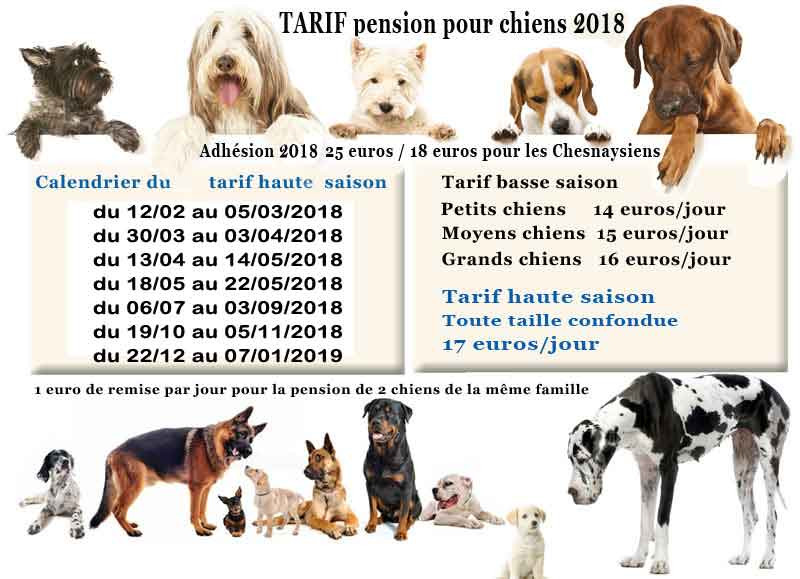 pension chien tarif