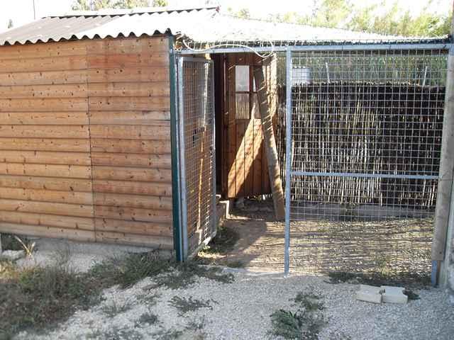 pension chien vaucluse 84