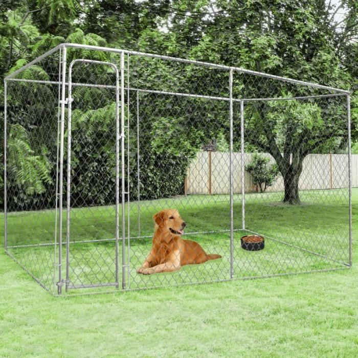 chenil chien 03