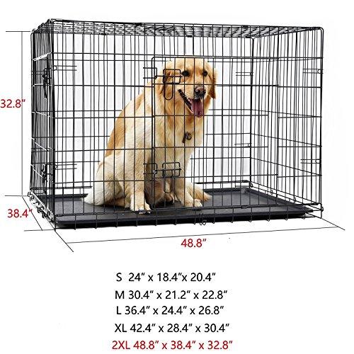 chenil chien 38