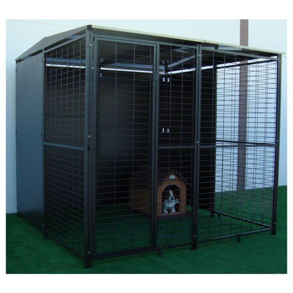 chenil chien 4m2