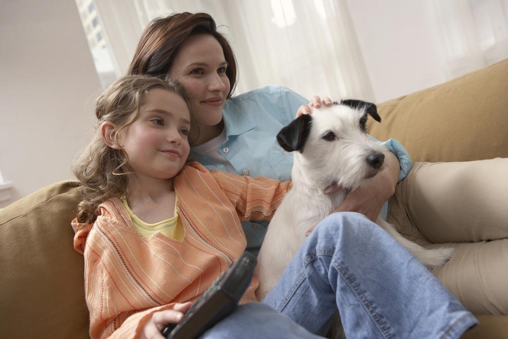 garde chien reglementation