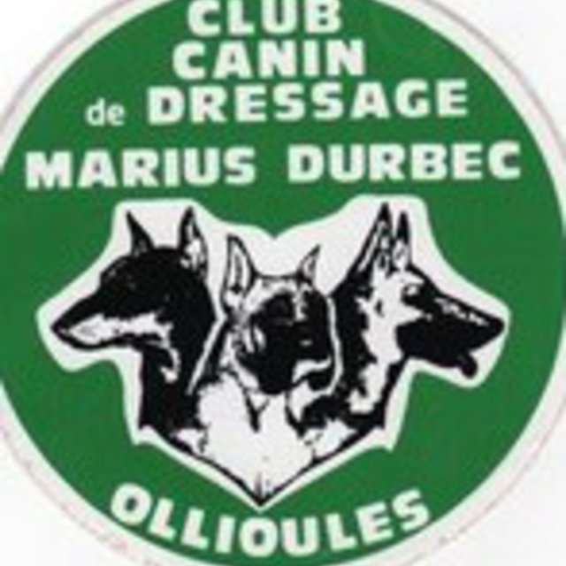 pension chien ollioules