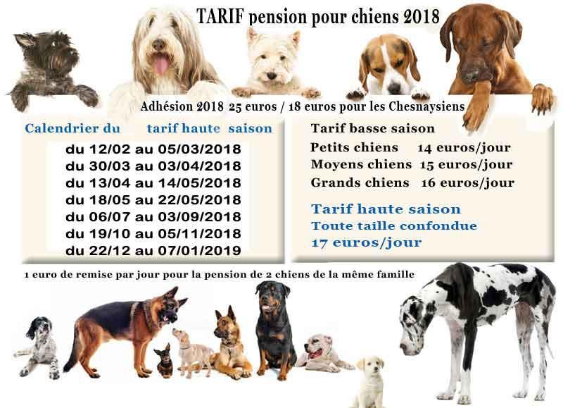 pension chien tarif